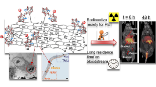 Radiolabeled Cobaltabis(dicarbollide) Anion–Graphene Oxide Nanocomposites for In Vivo Bioimaging and Boron Delivery